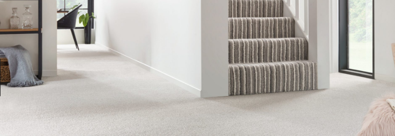 Useful Tips for Making Carpet Floors Last!