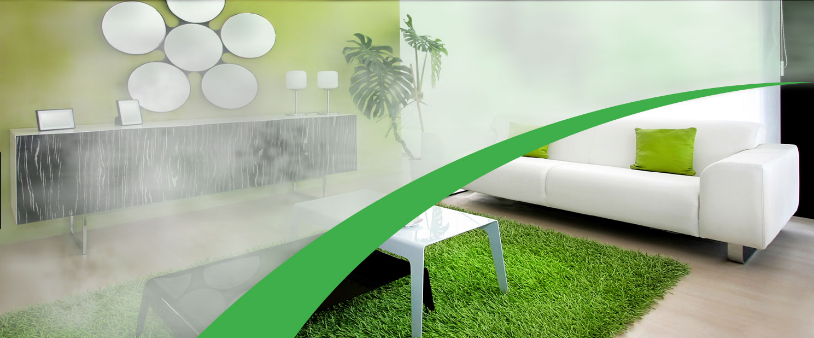 4 Benefits Of Eco-friendly Carpet Cleaning