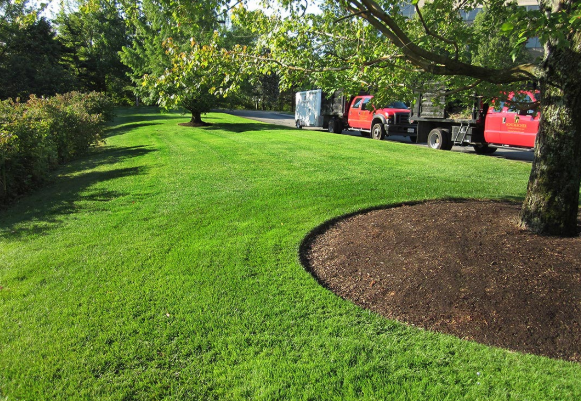 Choosing Commercial Landscape Management Contractors